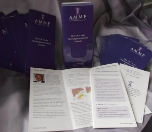AMMF's Brochure - June 2013
