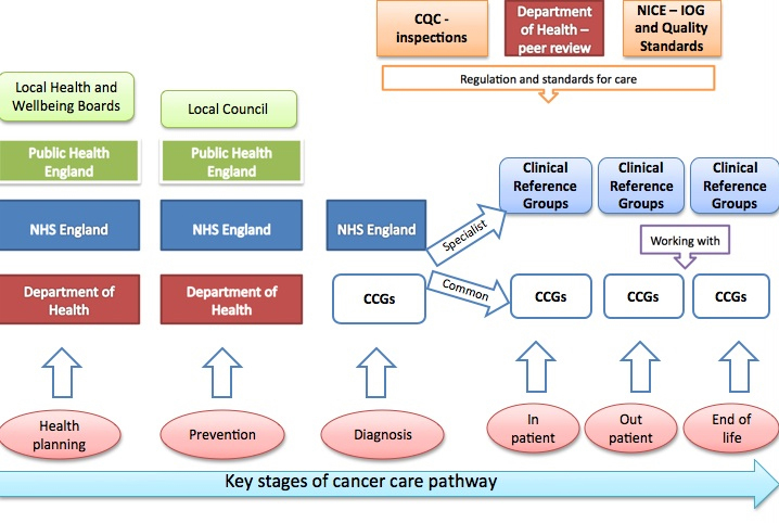 2. Key Stages of Cancer Care Pathway April 2013