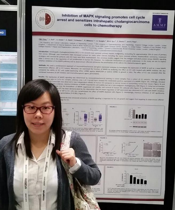 dr-gemma-choy-at-the-ddf-meeting-june-2015
