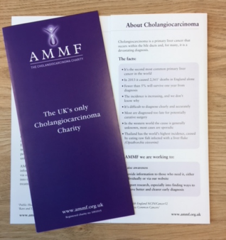 AMMF's Brochure